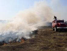 Большая часть лесных пожаров в России потушена
